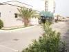 normal_foto-buling-sdc10824