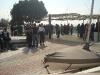 canottaggio-contro-abbandono-sportivo-precoce-lni-2-03-2012-1