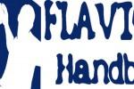 Logo ASDH Flavioni CV