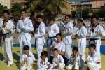 taekwondo1-300x223