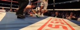 Emiliano Marsili nuovo campione mondiale silver WBC dei pesi leggeri 1.08.2015 (6)