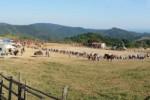 giovita-allumiere-monti-della-tolfa-696x186
